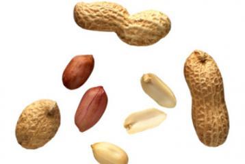 L'arachide