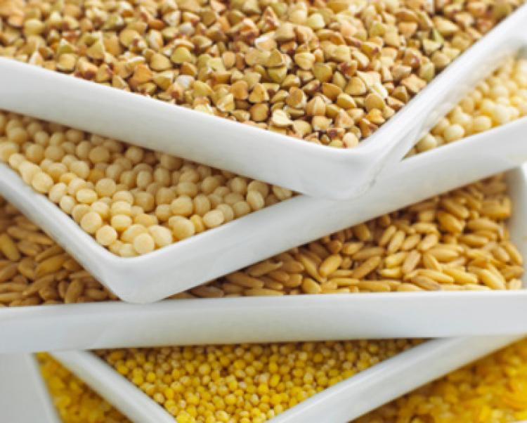 Le gluten : ennemi alimentaire numéro 1 ?